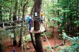 Forêt Adrénaline